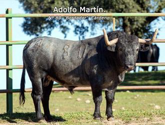 Adolfo Martín