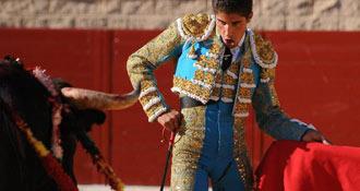 VIC FEZENSAC Robleño, palmas en su lote