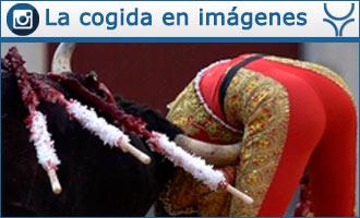 MADRID El tercer novillo le zarandeó con violencia