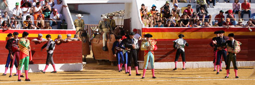 plaza-de-toros-roa-de-duero-511x170