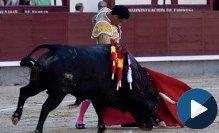 MADRID Destacan Iván Vicente y Pinar