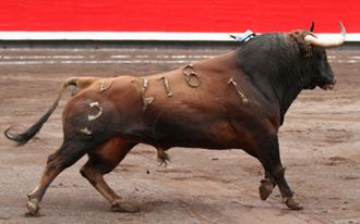 NOTICIAS La Comisión define las ganaderías
