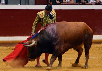 ILLUMBE Morante pinchó, a Castella le 'robaron'