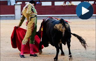 MADRID Los debutantes gustan en su presentación