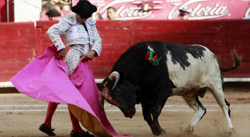 caballero-mexico-2015-511x280
