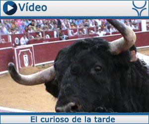 VÍDEO El toro de El Capea casi la lía