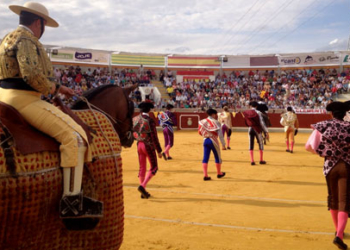paseillo-plaza-villaseca-de-la-sagra-511x290