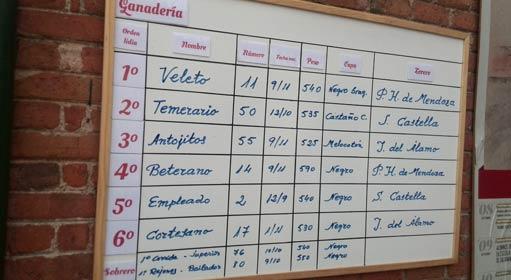 salamanca-sorteo-tablilla-14-9-15-511-280