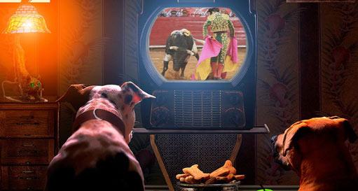 perros-mi-querida-tele-reportaje-20-10-15-511