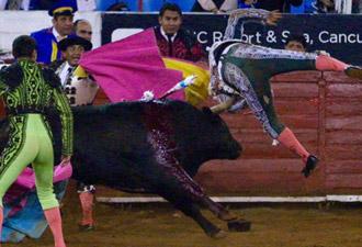 kingston-cornada-mexico-330x225