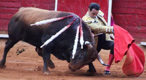 enrique-ponce-muleta-plaza-mexico-511x280