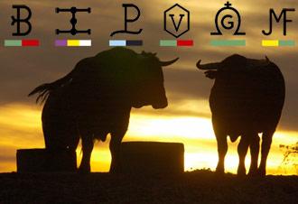 REPORTAJE Hablan los ganaderos de la concurso