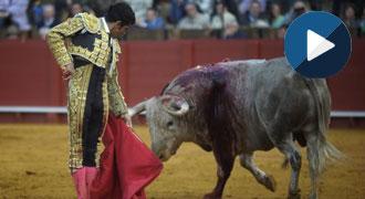 ENTREVISTA Joselito Adame reaparece en Sevilla