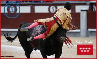 MADRID El toro le tuvo entre los pitones