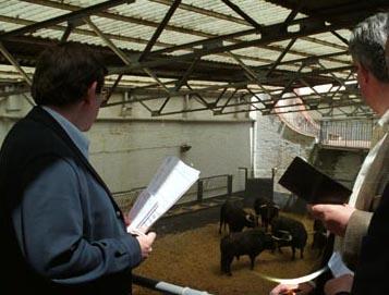 PREVIO Abre el jueves el mes de toros en Madrid