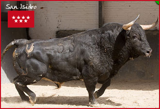 SORTEO MADRID Pedraza de Yeltes