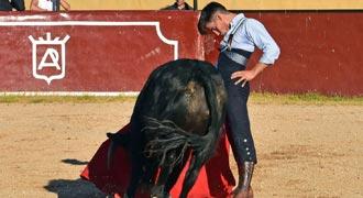 HERIDOS Torea el domingo en Torrejón de Ardoz