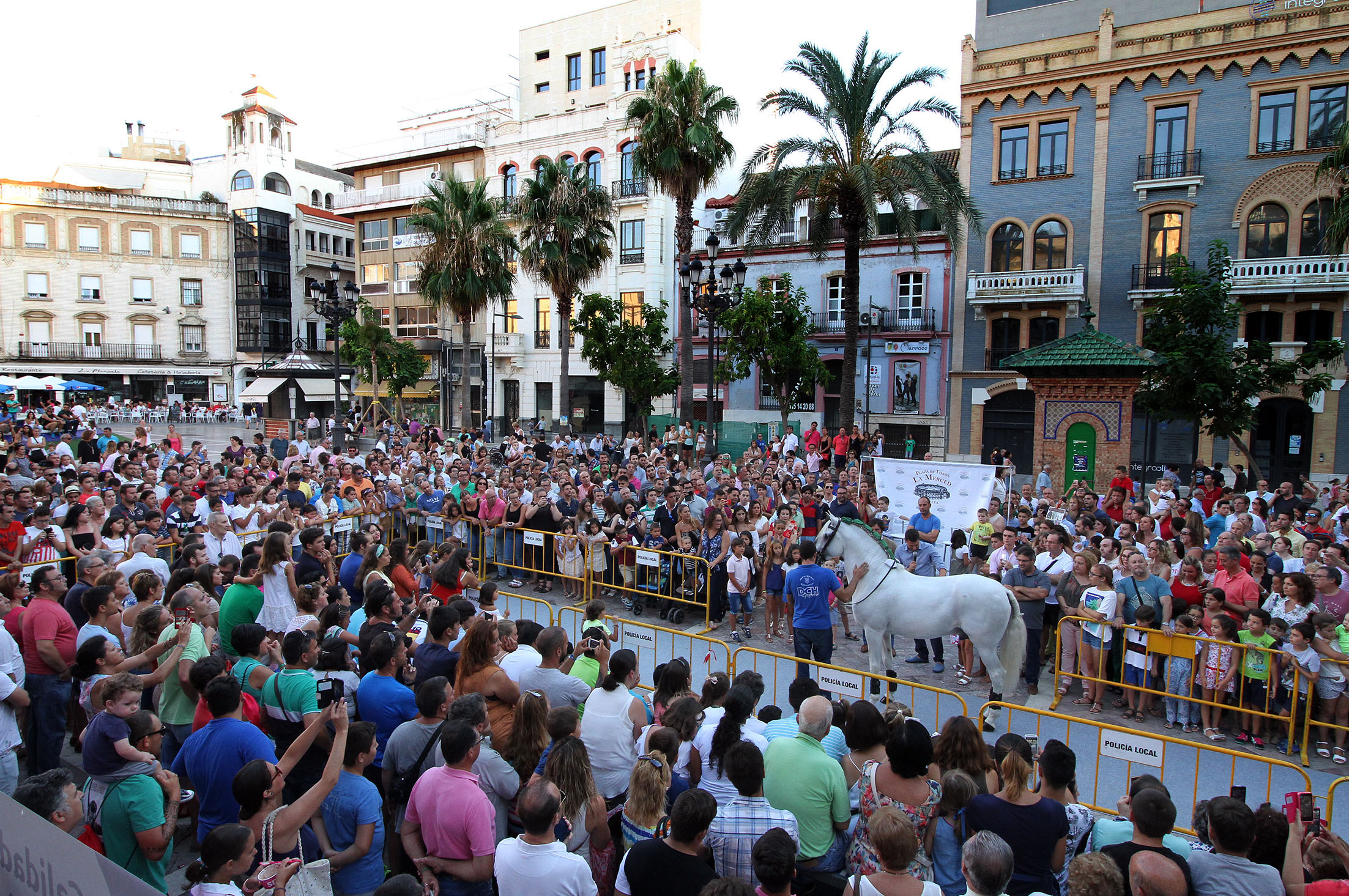 Presentación caballos Andrés Romero01