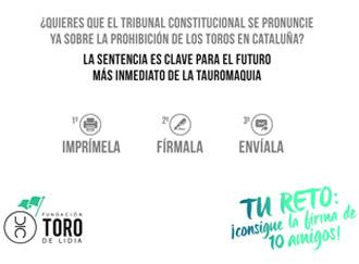 JUZGADOS Campaña de la Fundación Toro de Lidia