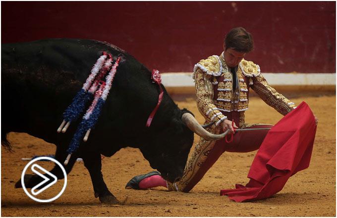 ILLUMBE Auténtico faenón de El Juli al tercero, dos orejas; drama y valor de José Tomás, oreja