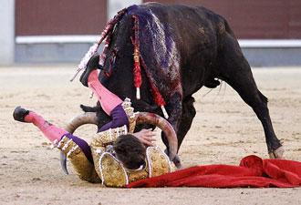 HERIDOS Corneado el domingo en Madrid