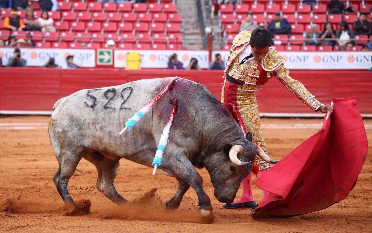 HERIDOS En su Zacatecas natal
