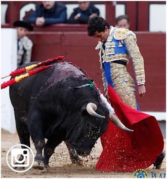 FOTOGRAFIAS de su importante tarde en Las Ventas