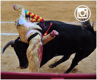 FOTOGRAFÍAS EN VIVO de Valencia