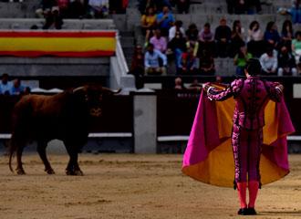 MADRID Tres novilladas y una corrida de toros