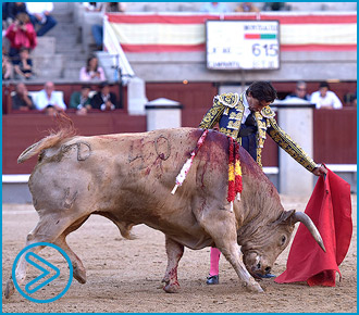 MADRID El banderillero Antonio Chacón, herido