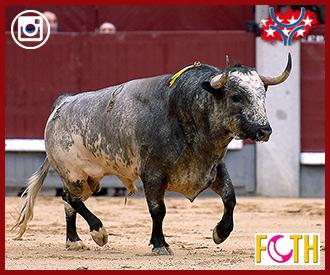 NUEVA SECCIÓN El juego de cada toro
