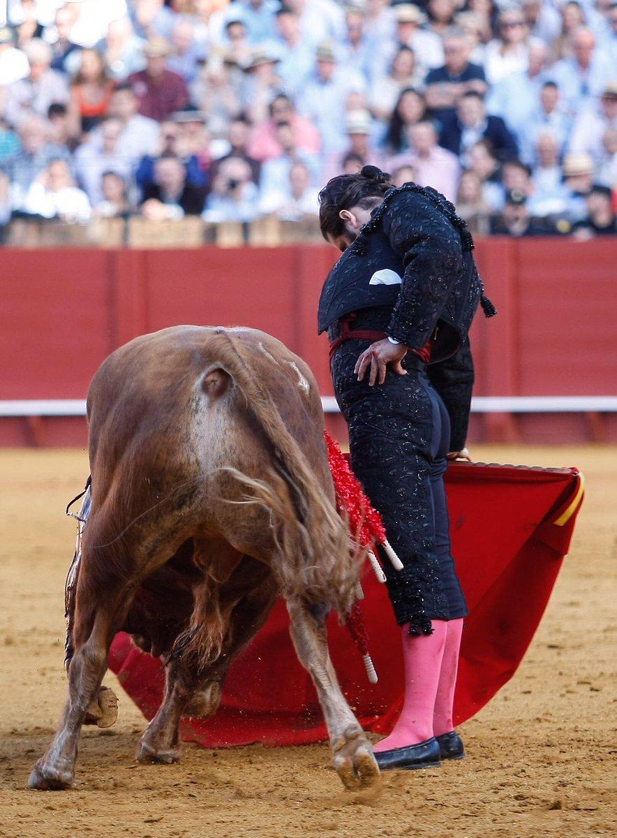 DECLARACIONES De la terna de la 8ª de Sevilla