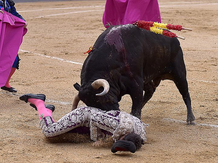 El paseillo un toro de l o - Estudio victoria lebrija ...