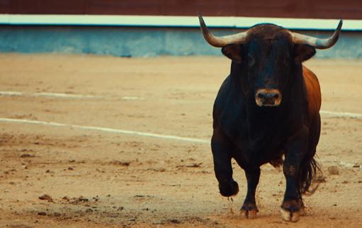 NOTICIAS Este jueves en Sevilla