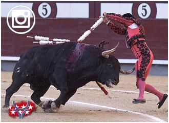 FOTOGRAFÍAS De la novena de Sevilla