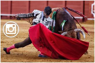 FOTOGRAFÍAS 'Bellito', gran toro de El Pilar
