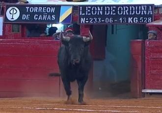 MÉXICO El 5º toro, en homenaje a Fandiño