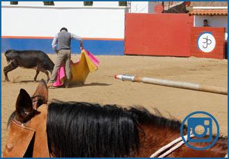 IMÁGENES Tentadero en la prestigiosa ganadería azteca