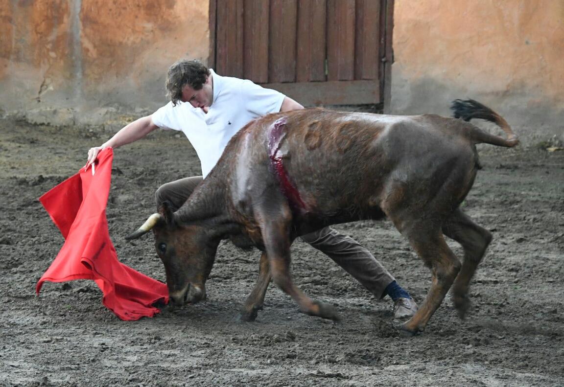 FOTOGRAFÍAS Tentadero en la ganadería colombiana
