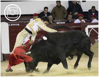 FOTOGRAFÍAS De Castilla indultó a 'Abrileño'