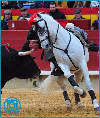 FOTOGRAFÍAS de la de rejones de Castellón