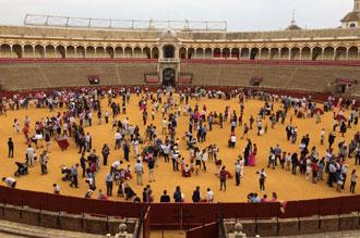 NOTICIAS Desde Sevilla