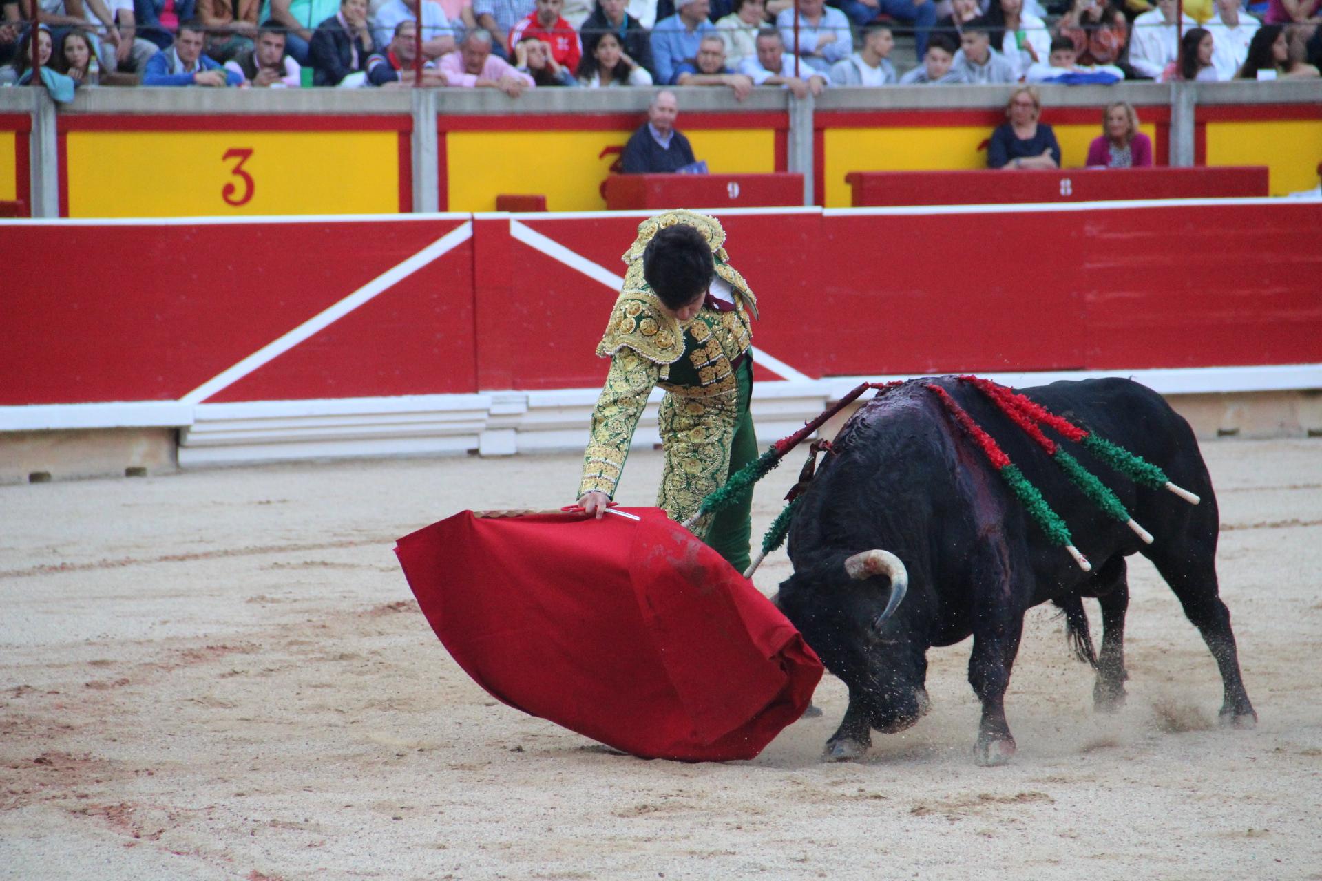 Oreja a Toñete en Pamplona bilaketarekin bat datozen irudiak