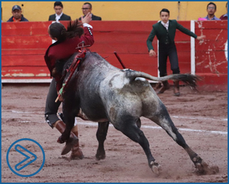 NOTICIAS Herida en el festival de Aguascalientes