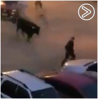 VÍDEO Cuatro personas heridas