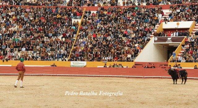 PORTUGAL Gran entrada y brillante espectáculo