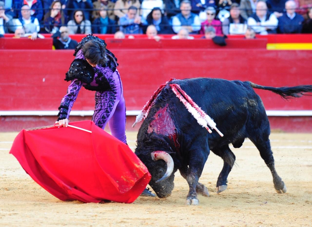 PREMIOS Por parte de la Diputación Valenciana