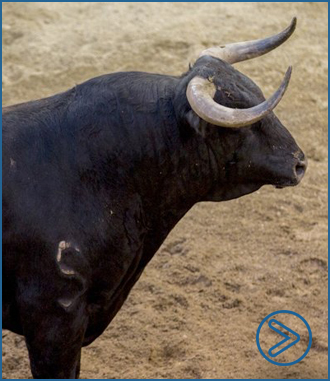 SORTEO SEVILLA Morante, Urdiales y Manzanares