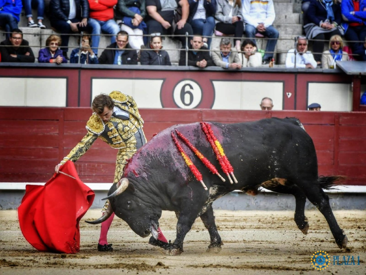 MADRID Con toros de El Tajo y La Reina (2º y 3º)
