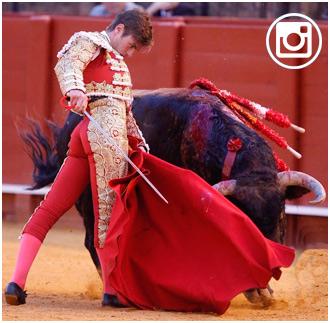 FOTOGALERIA de la novillada de Sevilla